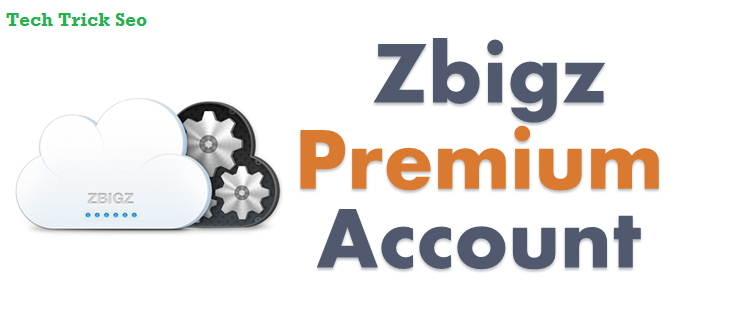 zbigz premium account