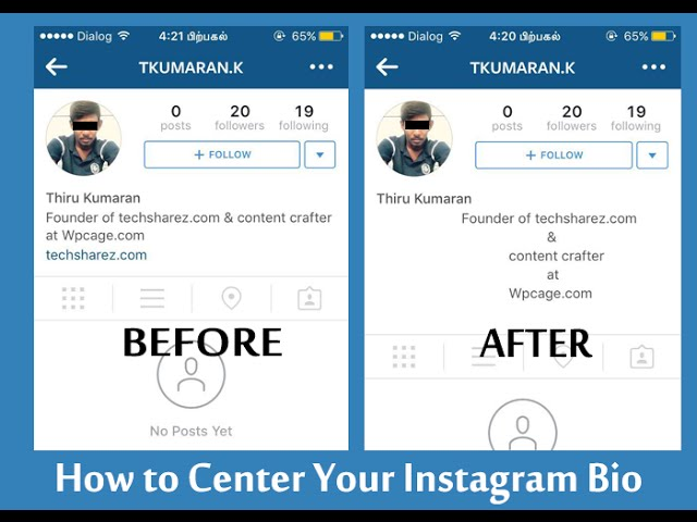 How to customize instagram bio