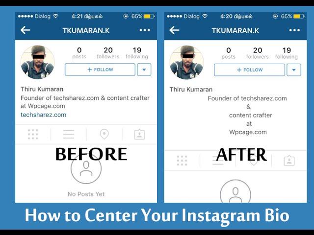How to customize instagram bio
