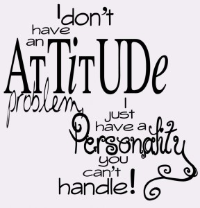 I-dont-have-an-attitude-problem-whatsapp-dp