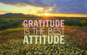 gratitude is the best attitude whatsapp dp