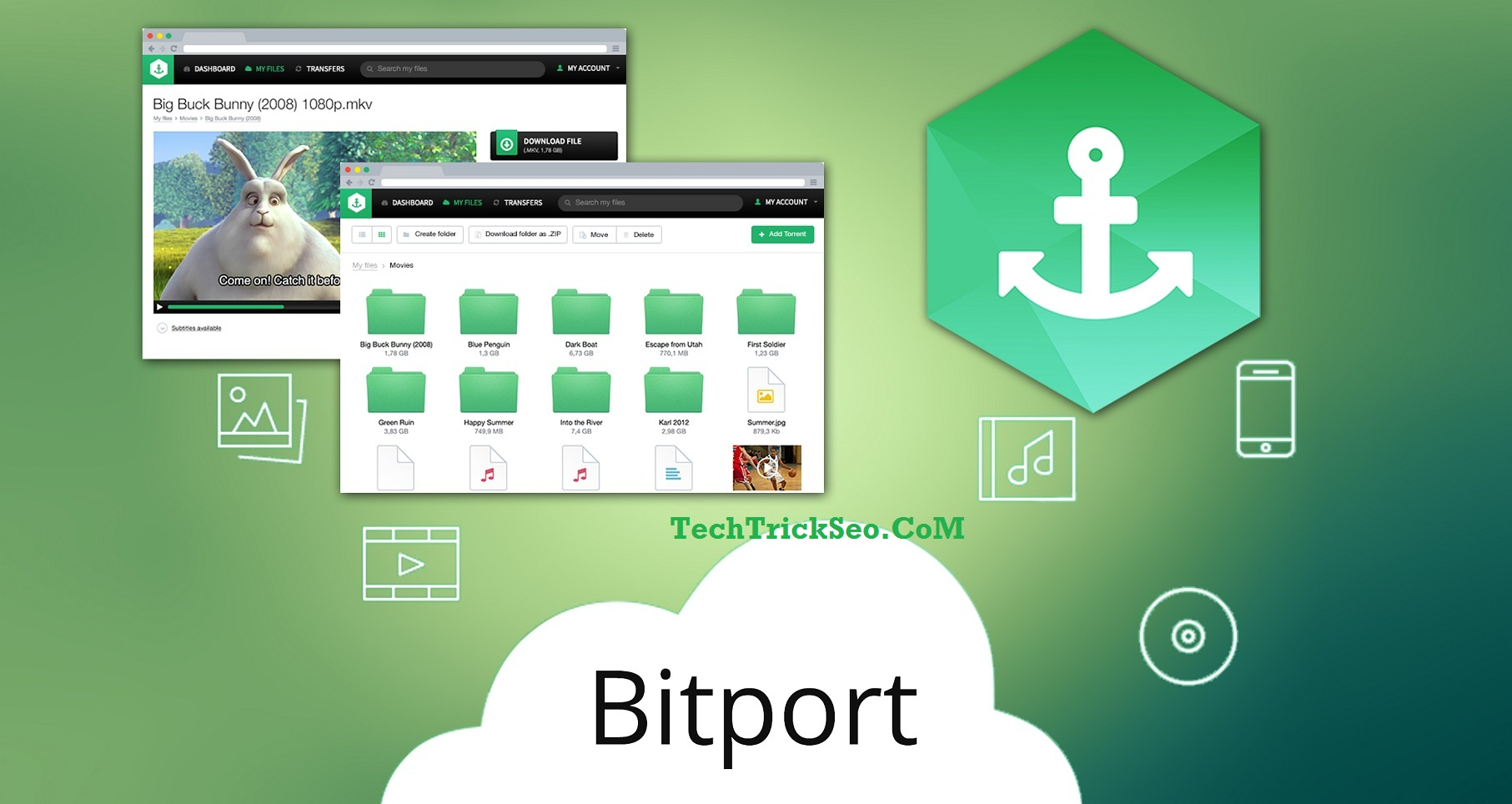 birport premium account